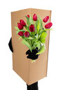 Concept package delivery to convey a floral bouquet Stock Photos