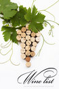 Concept  wine list design Royalty Free Stock Photos