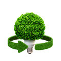Conceptual eco energy. Lamp and green arrows from the grass. Recycling concept isolation on white Royalty Free Stock Photo