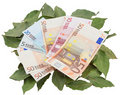 Conceptual photo - money resting on laurels Royalty Free Stock Photography
