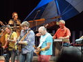 Concert de Jimmy Buffett Photos stock