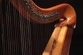 Concert Harp. close up.