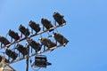 Concert lighting equipment on blue sky background Stock Photos