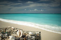 Conch shell with a view of the atlantic ocean in turks and caicos Royalty Free Stock Photos