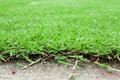 Concrete floor and green grass Royalty Free Stock Photo