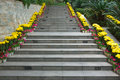 Concrete step Royalty Free Stock Photography