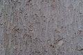 Concrete texture a close up of a Stock Image