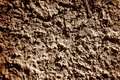 Concrete texture the natural background Royalty Free Stock Photos