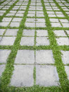 Concrete walkway in the park on green gras Stock Image