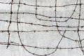 Concrete wall with barbed wire Royalty Free Stock Photo