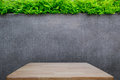 Concrete wall or marble wall and wooden floor or wooden table with ornamental plants or ivy or garden tree. Royalty Free Stock Photo