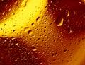 Condensation Stock Image