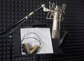 Condenser microphone in recording room vocal Stock Images