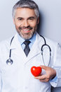 Confident cardiologist mature doctor holding heart shape toy and smiling while standing against grey background Royalty Free Stock Photo