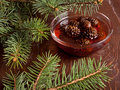 Confiture from fir cones the closeup Stock Photos