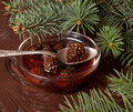 Confiture from fir cones the in glass dish Royalty Free Stock Photos