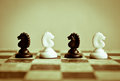 Confrontation of black and white knights on the chessboard Royalty Free Stock Photo