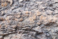 Conglomerate texture of the stone strip surface texture at phataem national park Royalty Free Stock Photos