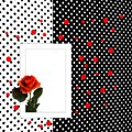 Congratulation card with rose polka dot background Royalty Free Stock Image