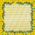 Congratulation with frame and yellow flowers Royalty Free Stock Images