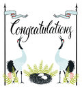 Congratulations card with common cranes fern and nest calligraphy hand drawing Royalty Free Stock Photography