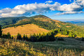 Conifer forest in classic Carpathian mountain valley Landscape Royalty Free Stock Photo