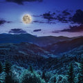 Coniferous forest on a mountain slope at night steep range Stock Images