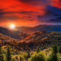 Coniferous forest on a mountain slope steep range at sunset Royalty Free Stock Photo