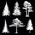 Coniferous trees silhouettes collection on black background Royalty Free Stock Photography