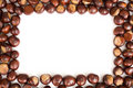 Conker border Stock Photo