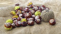 Conkers and a ball of string on top burlap fabric Stock Photo