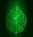 Connected dots point line triangle leaf. Eco nature concept on green background lights geometric poligonal low poly icon