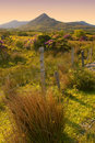Connemara Royalty Free Stock Photo