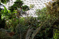 Conservatory Royalty Free Stock Photo