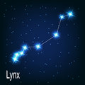 The constellation lynx star in the night sky vector illustration Royalty Free Stock Photos