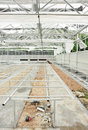 Construct greenhouse Stock Photography
