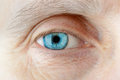 Contact Lens on the Eye Royalty Free Stock Photo