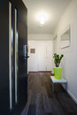 Contemporary home entrance front door and hallway Royalty Free Stock Photo