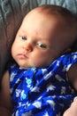 Contented Happy Newborn Royalty Free Stock Photo