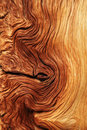 Contorted wood grain Royalty Free Stock Photo