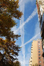 Contrails over buildings urban trees in autumn and sky with above Royalty Free Stock Image