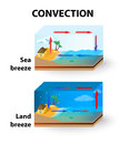 Convection land breeze and sea breeze is the transfer of thermal energy by particles moving through a fluid thermal energy is Royalty Free Stock Photos