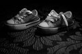 Converse all stars shoe shoes Stock Image