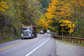 Convoy of trucks on the beautiful autumn highway three big rigs semi truck moving column one by one a winding forest create an Stock Image