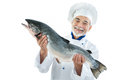 Cook with a big fish chef holding atlantic salmon isolated on white background Royalty Free Stock Photos