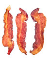 Cooked bacon strips Royalty Free Stock Photo