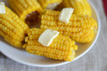 Cooked corn with butter Royalty Free Stock Photo