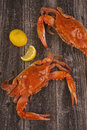 Cooked crabs on rustic background Stock Image