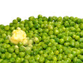 Cooked Garden Peas Royalty Free Stock Photo