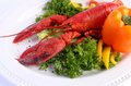Cooked lobster with various vegetables on white plate Royalty Free Stock Photo